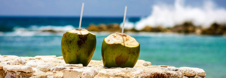 Two coconuts on a wall by the ocean