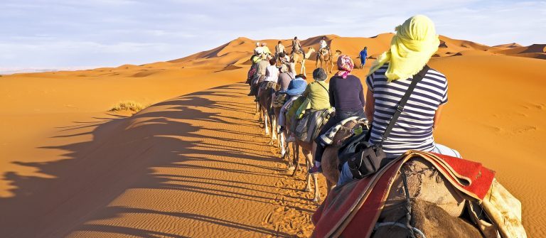Camel caravan going through the sand dunes in the Sahara Desert, Morocco_shutterstock_172448144