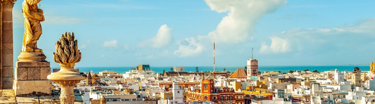an aerial view of the roofs of Cadiz, Spain, from the belfry of its Cathedral_416281882