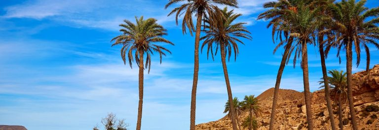 Almeria-in-Cabo-de-Gata-Playazo-Rodalquilar-beach-at-Mediterranean-Spain_284703944-1