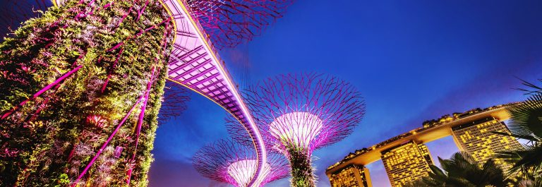 Singapore Supertrees and Skywalk in Gardens by the bay