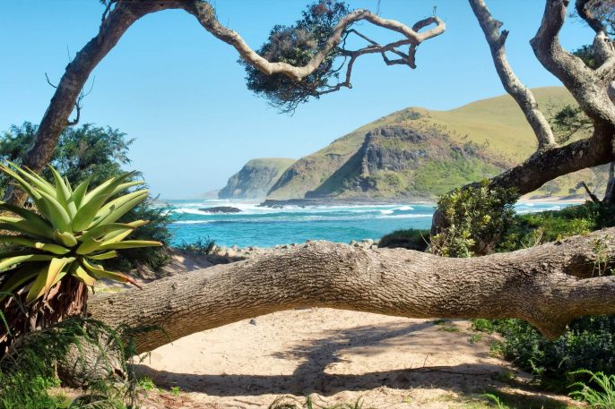 coffee_bay_eastern_cape_south_africa_188193116