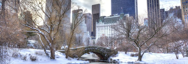 Central-ParkNew-York_shutterstock_170763860
