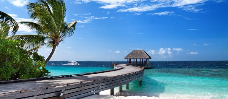 maledives_palmtree_bridge_579597598