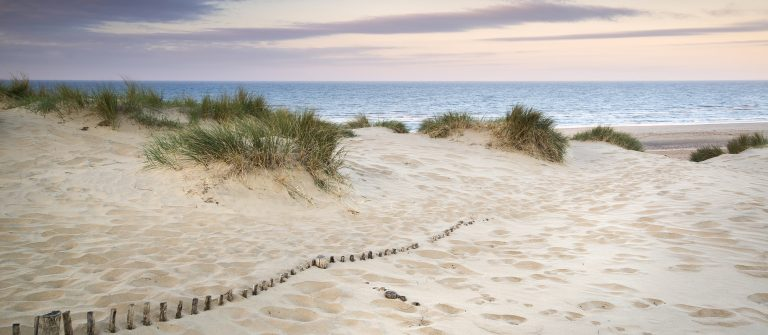 Landscape-of-grass-in-sand-dunes-at-sunrise-with-wooden-fences-under-sand-dunes_147494027