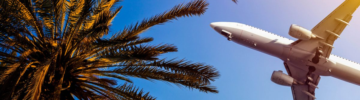 Airliner passing over palm trees
