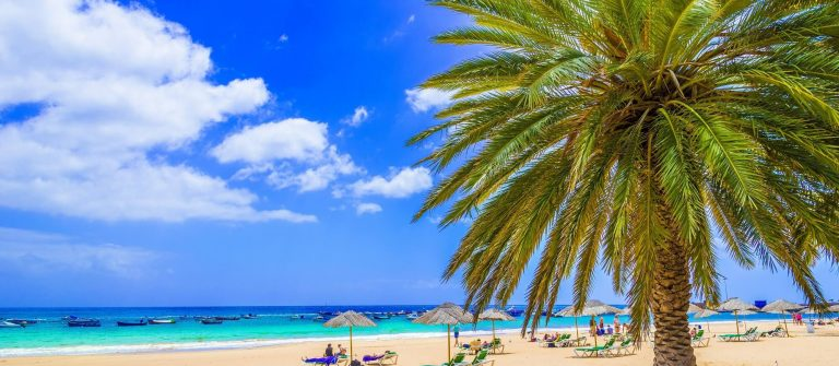 Beach-in-Tenerife-Canary-Islands-Spain_549304237