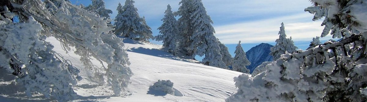 Mountain-and-snowy-forest.-Pyrenees.-Lerida-Spain_519787267_1920x1280