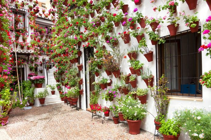 Spring-Flowers-Decoration-of-Old-House-Patio-Cordoba-Spain-Europe_179691584-1