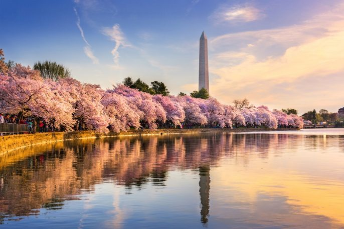 the-tidal-basin-with-Washington-Monument_shutterstock_527729869_900x600